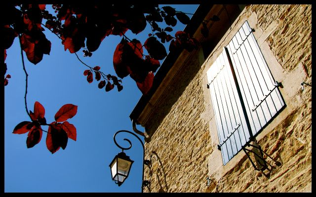 French Stone House with Blue Shutters, Lamp and a Red-Leafed Tree in Burgundy