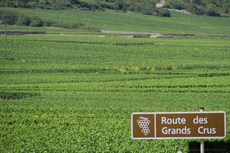 Route des Grand Crus Burgundy France