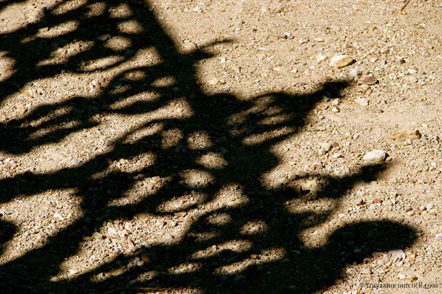 Virginia City Nevada Cemetery Shadows