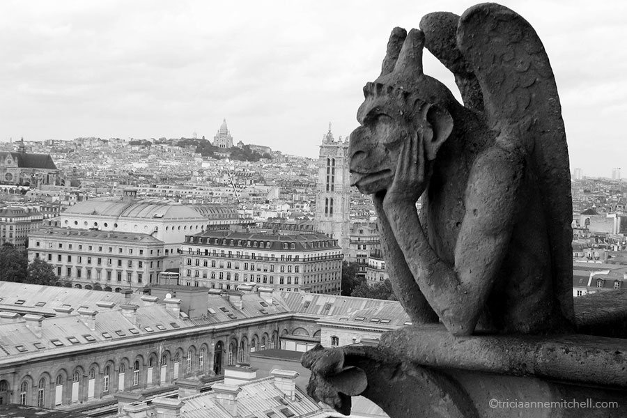 gargoyle-gazing-at-sacre-coeur-from-notre-dame-in-paris