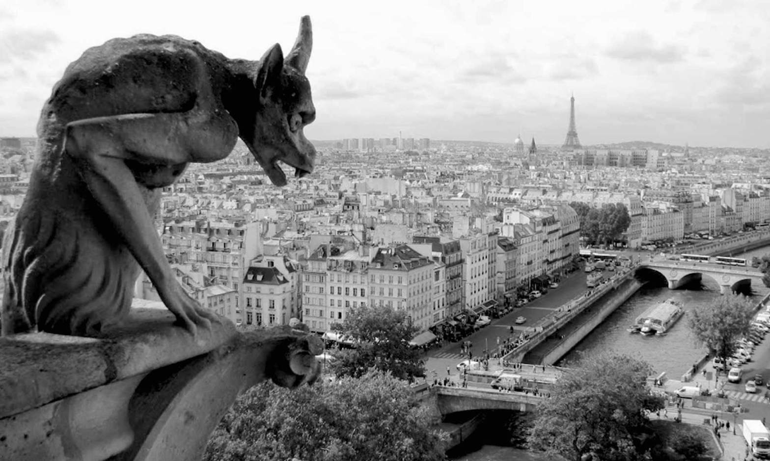 A gargoyle-overlooking-the-seine-notre-dame-paris