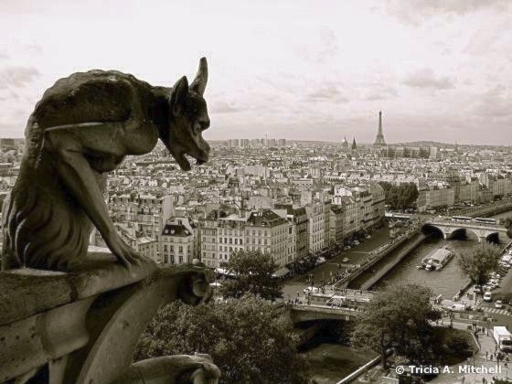 gargoyle-overlooking-the-seine-notre-dame-paris