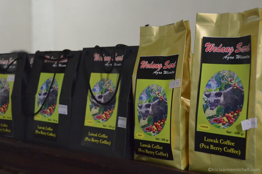 Various sized bags of Kopi Luwak coffee sit on a coffee plantation gift shop in Bali.