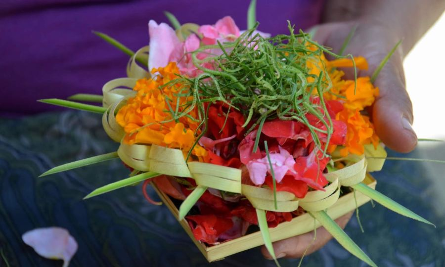 A woman holds Balinese 'canang sari' in her hand. These flowery spiritual offerings are placed in sacred places on the island of Bali.