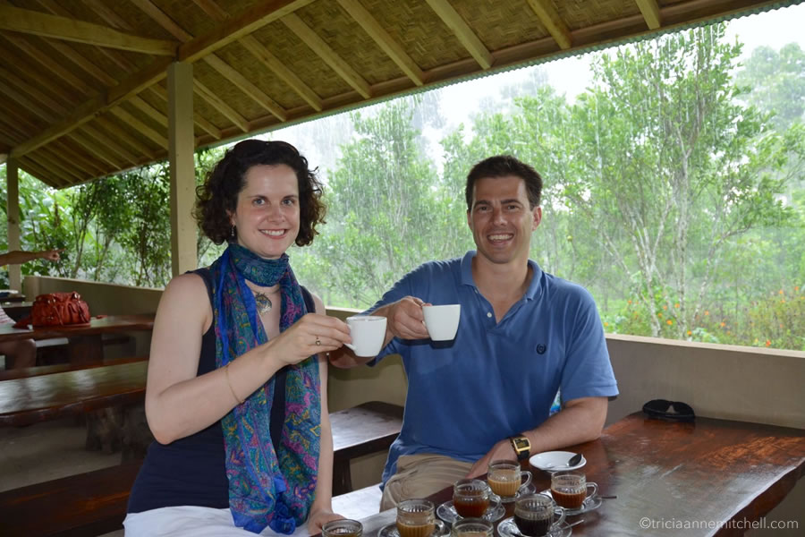 A woman and man hold white cups filled with Kopi Luwak poop coffee. They're sitting in a covered area at a coffee plantation.