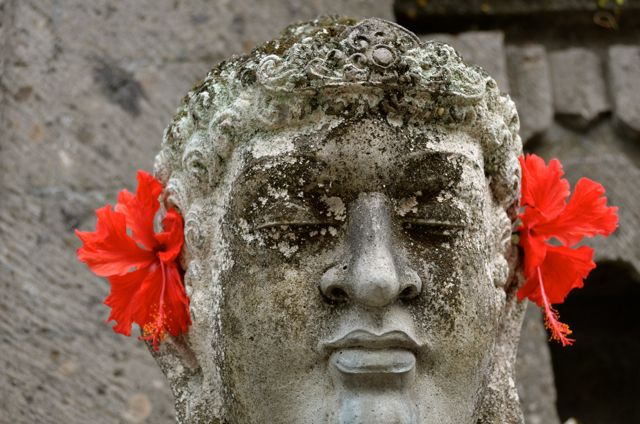 A grey statue wears hibiscus flowers reminiscent of earrings.