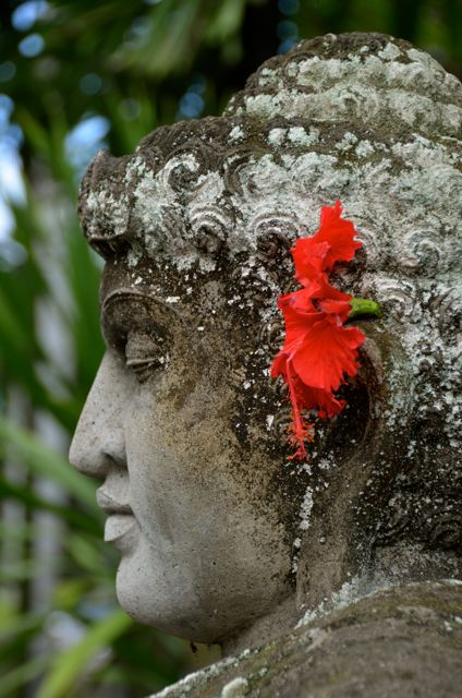 A grey Balinese statue id decorated with a red hibiscus flower.
