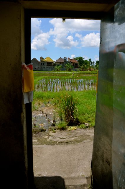 A rice-paddy view from a home in Ubud, Bali.
