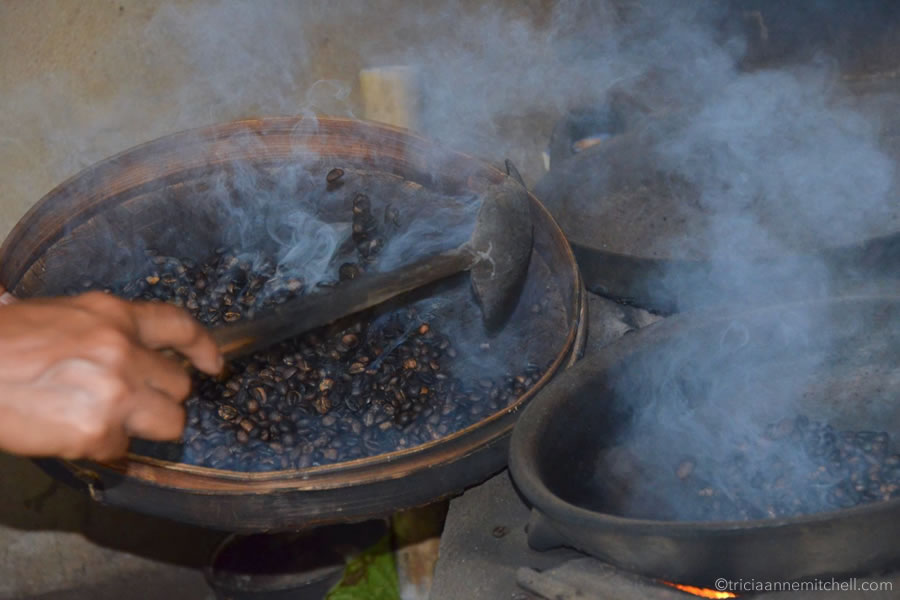 A woman's hand stirs weasel poop coffee beans, as the roast over a flame.