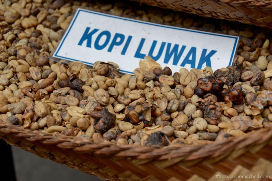 Coffee beans, called 'Kopi Luwak' in Bali, fill a basket on a coffee plantation in Indonesia.