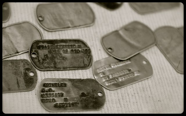 dog tags for sale, placed on blanket