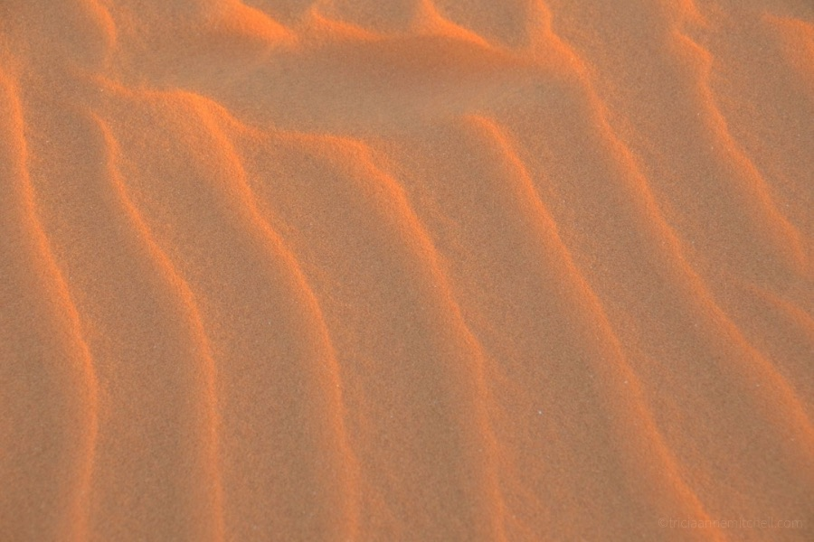 A close-up of the sand's wavy patterns at the Mui Ne Sand Dunes.