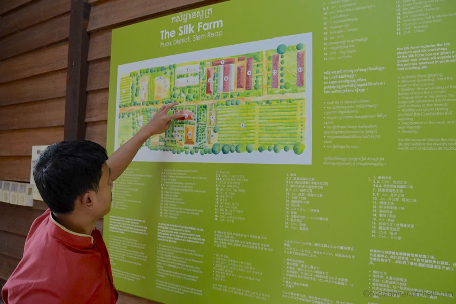 A Cambodian man points to a map at the Artisans Angkor Silk Farm, near Siem Reap, Cambodia.