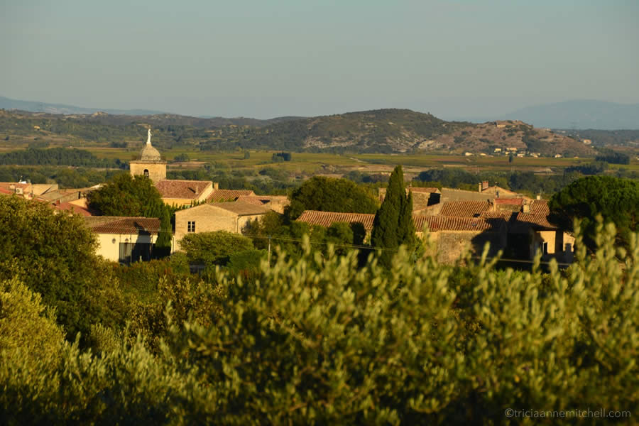 Stone homes with terracotta roofs seemingly rise from an olive grove near Sernhac, in France's Occitanie region.