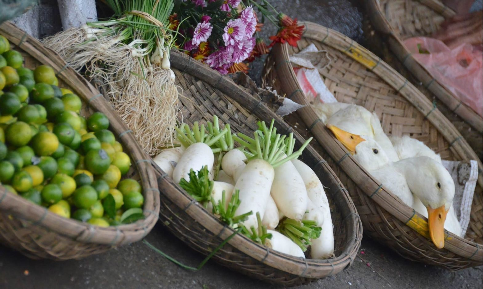 At the outdoor market in Hoi An, Vietnam, baskets of fresh fruit (limes), vegetables (turnips), flowers, and live ducks sit on the pavement.