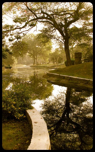 Stream in the Lodi Gardens - New Delhi India