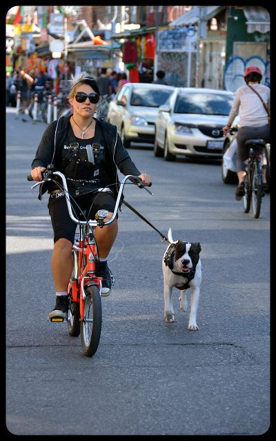 Woman biking with dog in Kensington, Toronto