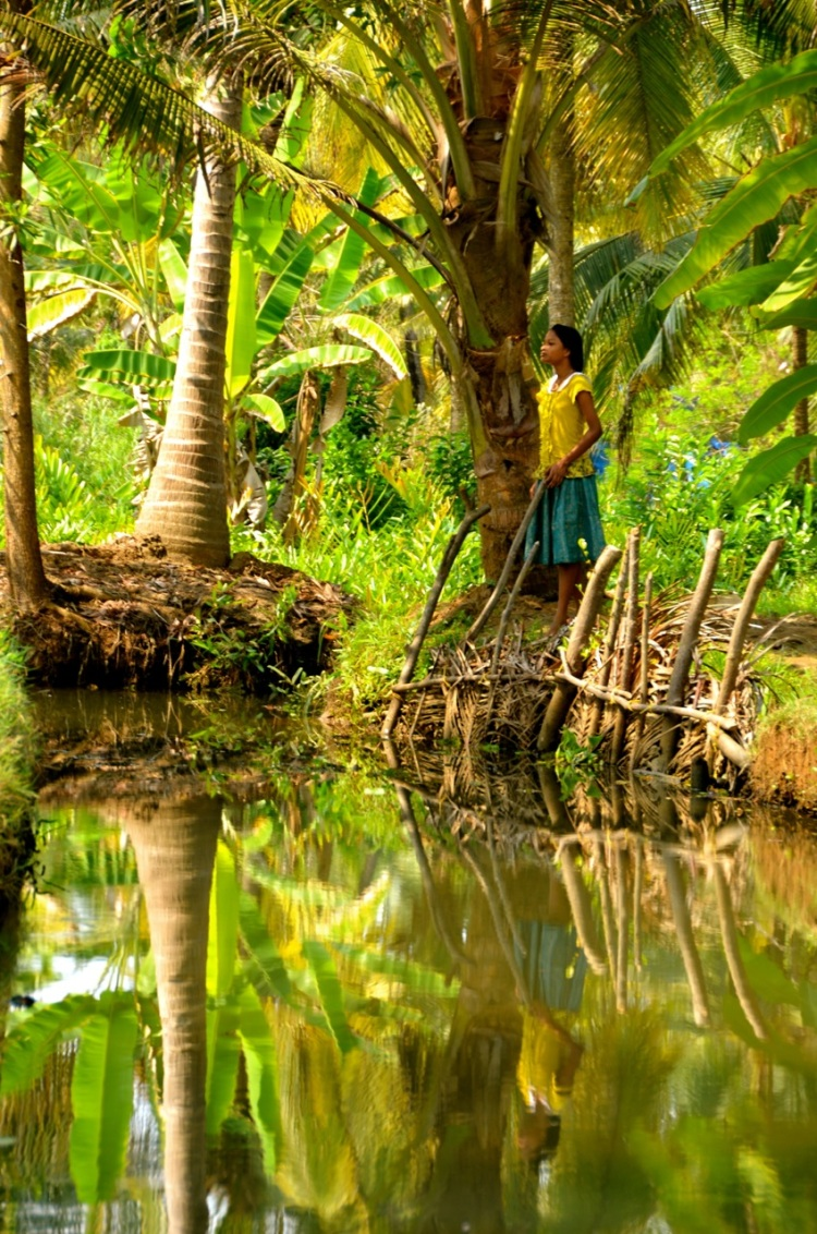 Mitchell, Tricia Kerala Backwaters GREEN Capture the Color