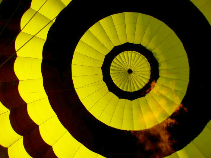 Mitchell, Tricia YELLOW Loire Valley balloon Capture the Color