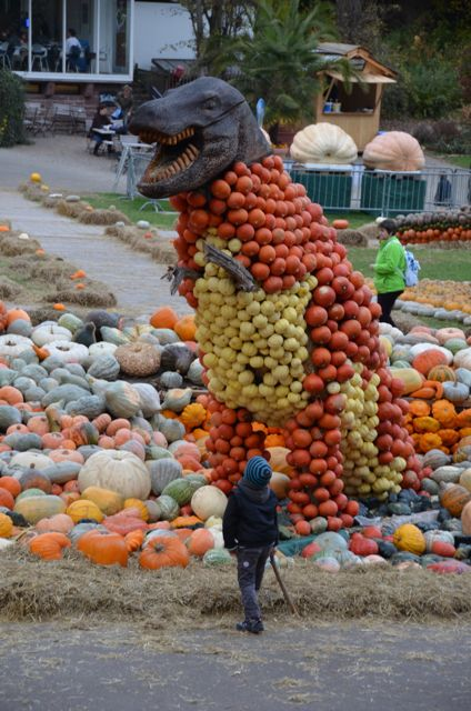 A boy looks up at a massive T-Rex dinosaur fashioned out of pumpkins at the Ludwigsburg Pumpkin Fest in Germany.