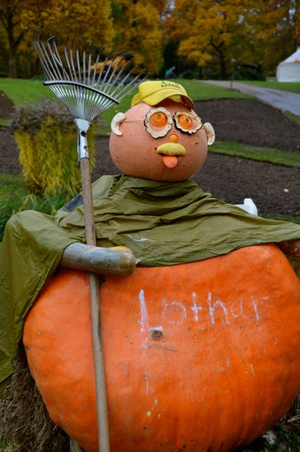 A gardener figure, made out of pumpkins and holding a rake, at the Ludwigsburg Pumpkin Fest in Germany.