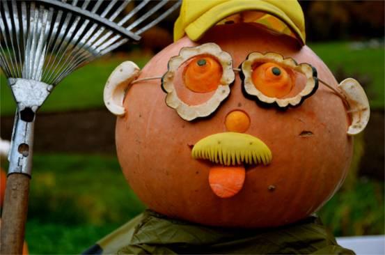 Pumpkin Fest Ludwigsburg Germany Kuerbisausstellung
