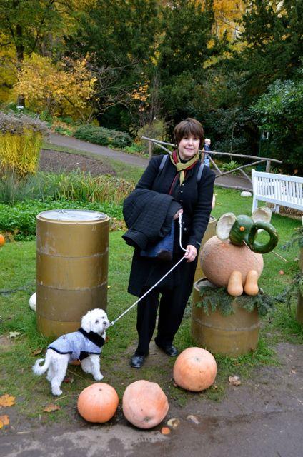 A woman walks a dog at the Ludwigsburg Pumpkin Fest.