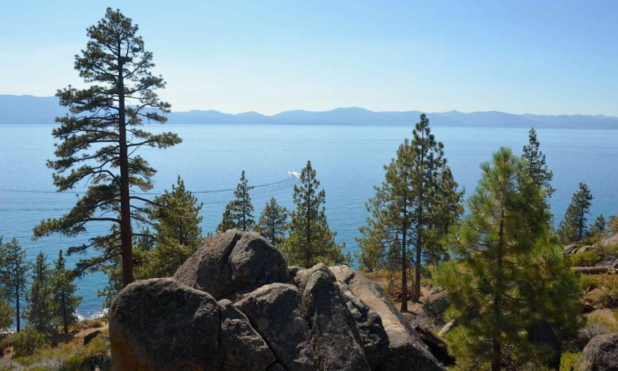 A speedboat cuts through Lake Tahoe, with mountains in the distance, and evergreen trees and rocks in the foreground.