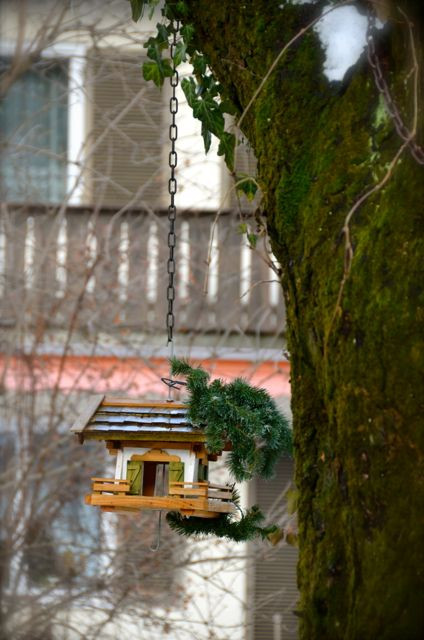 A birdcage, designed like a miniature traditional Bavarian house, hangs on a tree in Oberammergau, Germany.