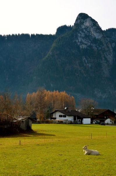 Oberammergau - Mountain Scene Koeffl