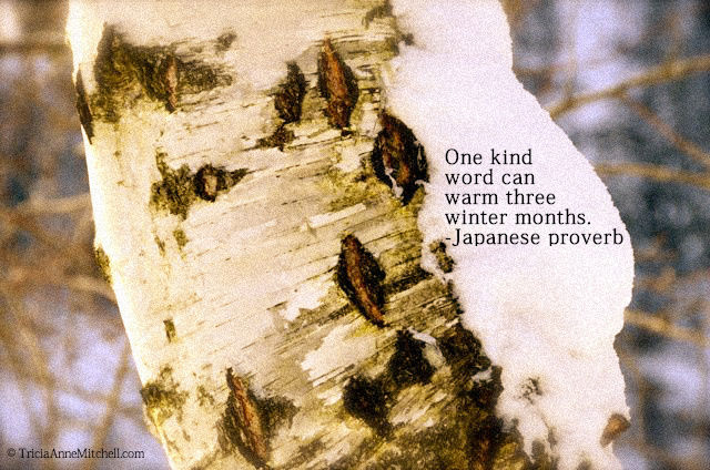 birch in snow quote