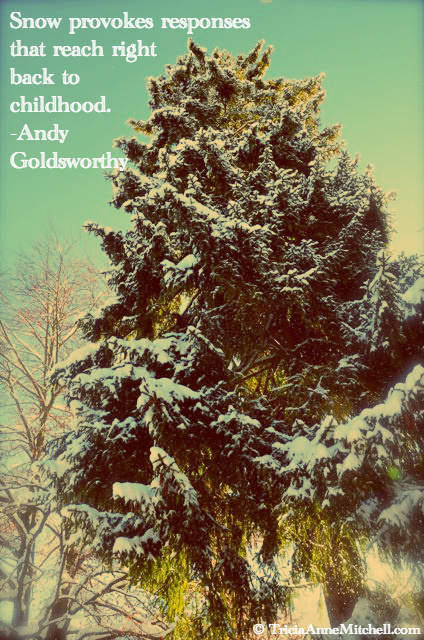 evergreen dressed in snow quote