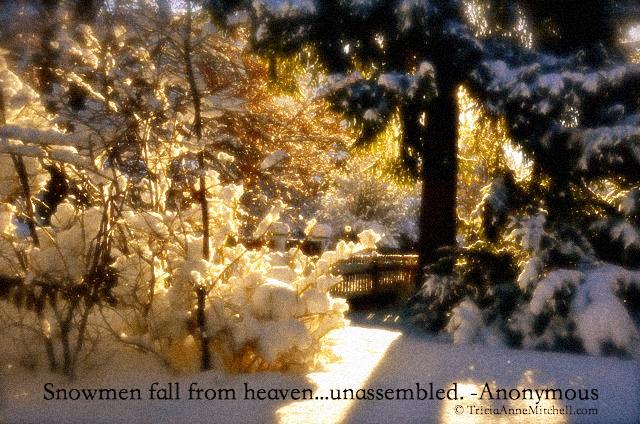 snowmen fall quote