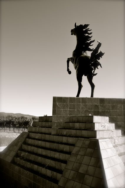 A statue of a horse at the Black Stallion Winery in California.