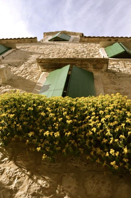 A stone building with green shutters and yellow flowers, in the Croatian town of Trogir.