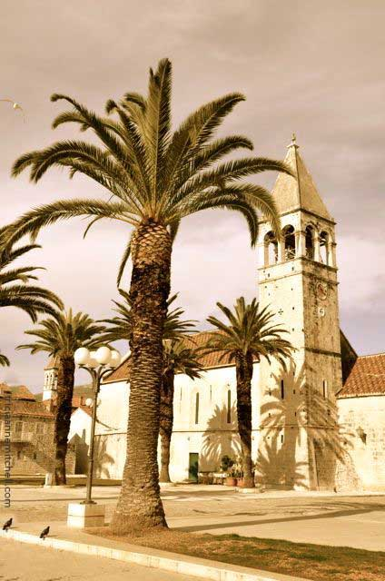 Palm trees cast shadows in front of a Trogir, Croatia church.