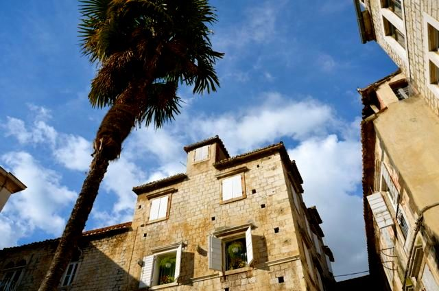 Trogir courtyard - Croatia with palm trees