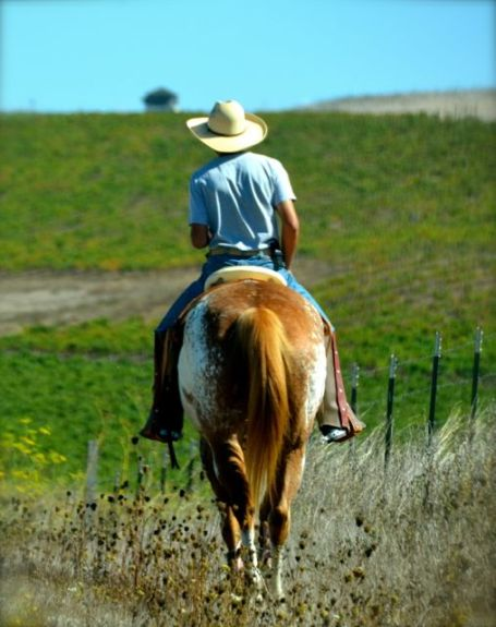 man riding horse in California