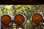 napa wine barrels