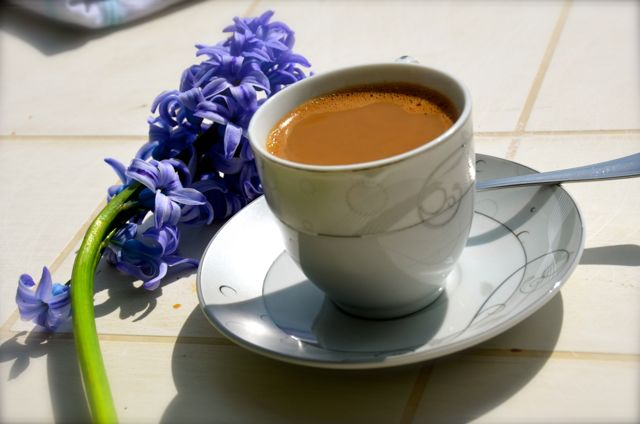 Turkish coffee and hyacinths