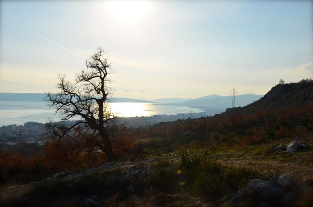 Wine Tour in Croatia Zinfandel Split Kastela - 2048