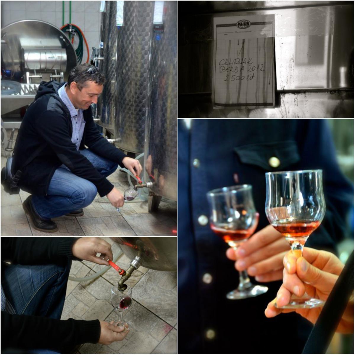 pouring wine from fermentation tank in kastela croatia