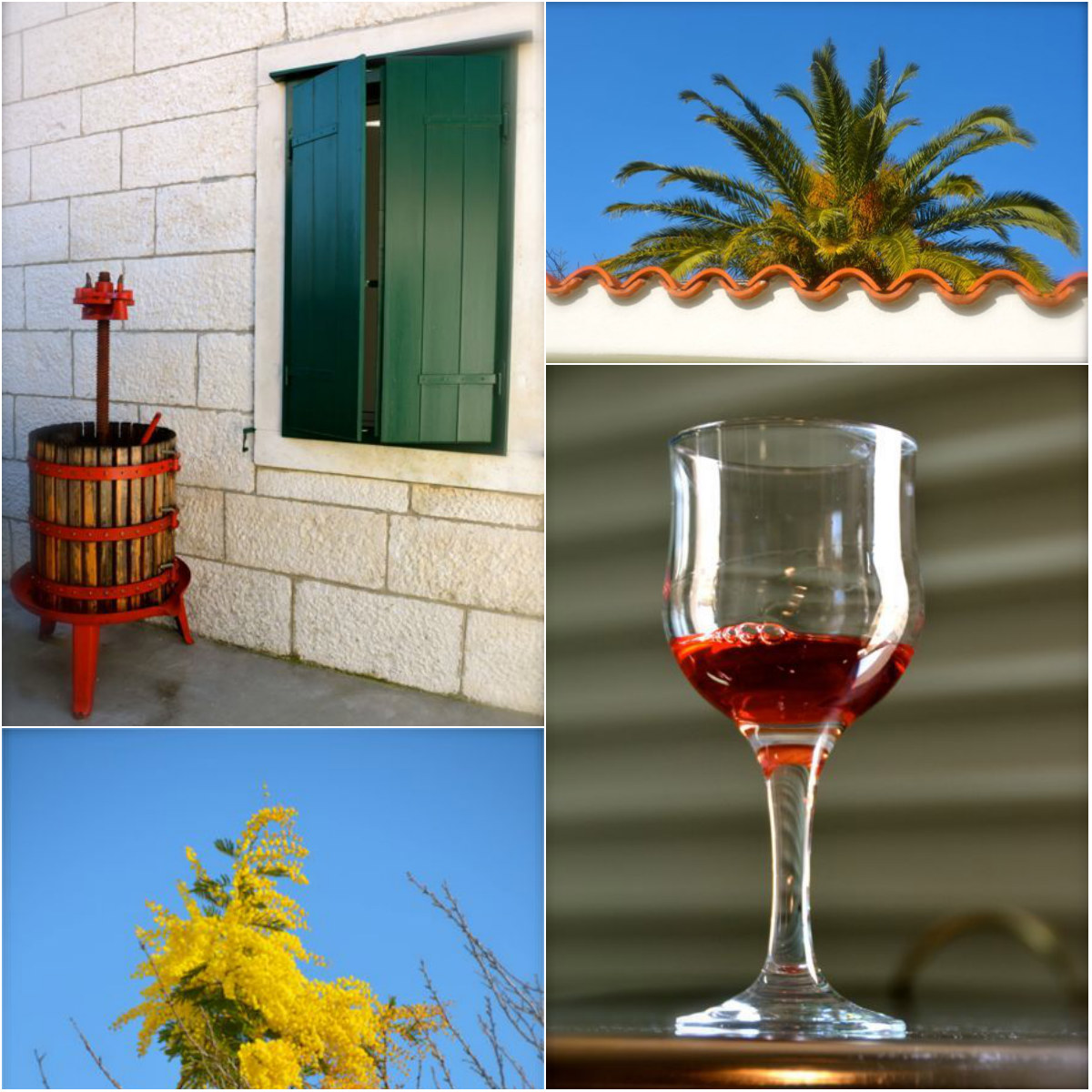 glass of wine, grape press, flowers, palm tree