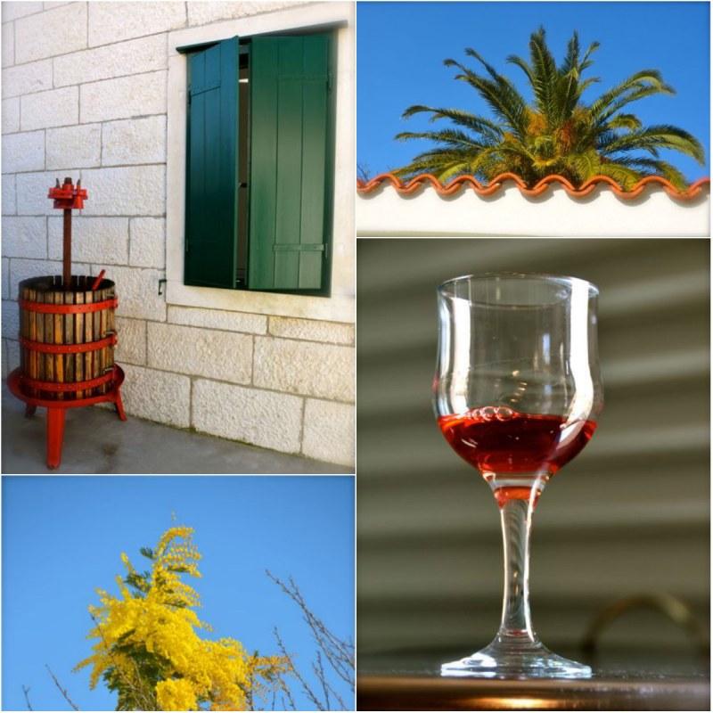 glass of wine, grape press, flowers, palm tree