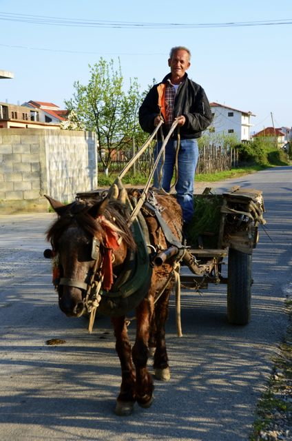 horse drawn cart in albania