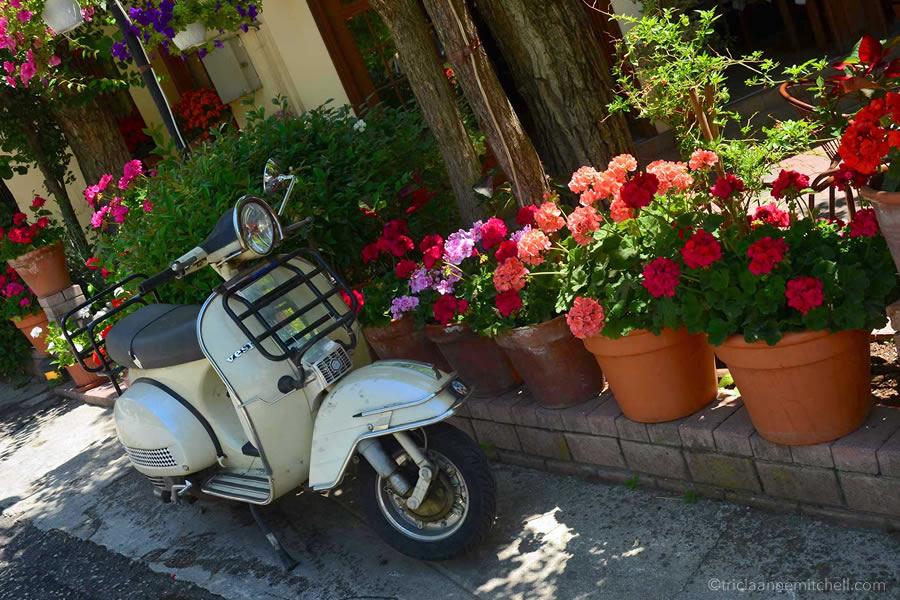 Kastraki Greece Meteora Vespa Flowers