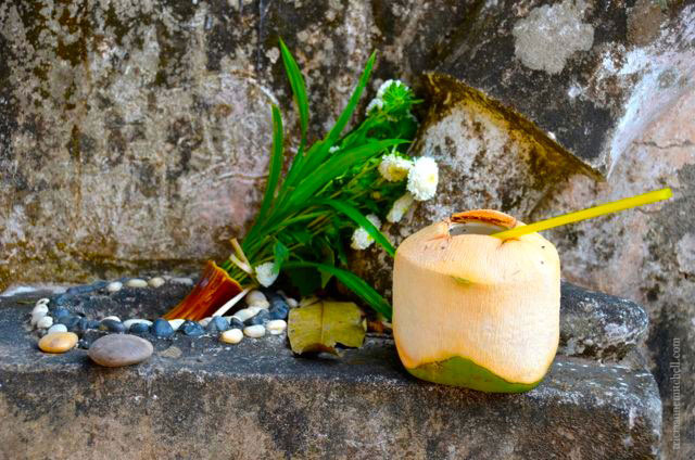 Coconut water and flower offerings.