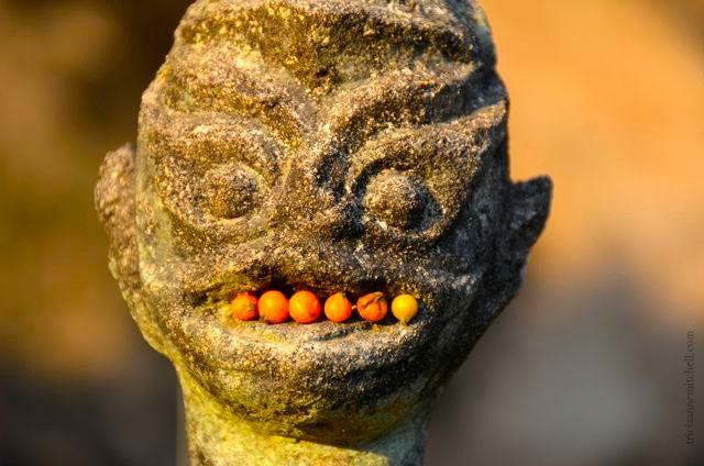Buddha-Park-Vientiane-Laos-Xieng-Khuan130-a