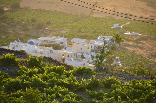 The view of Santorini vineyards, as seen from our apartment balcony in Imerovigli.