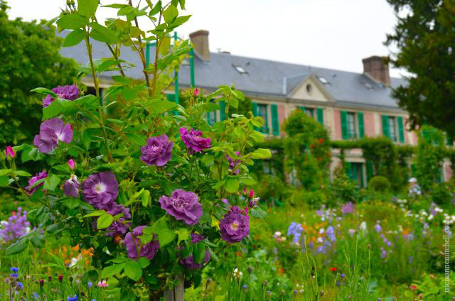 Claude-Monet-Garden-Visit-Giverny58
